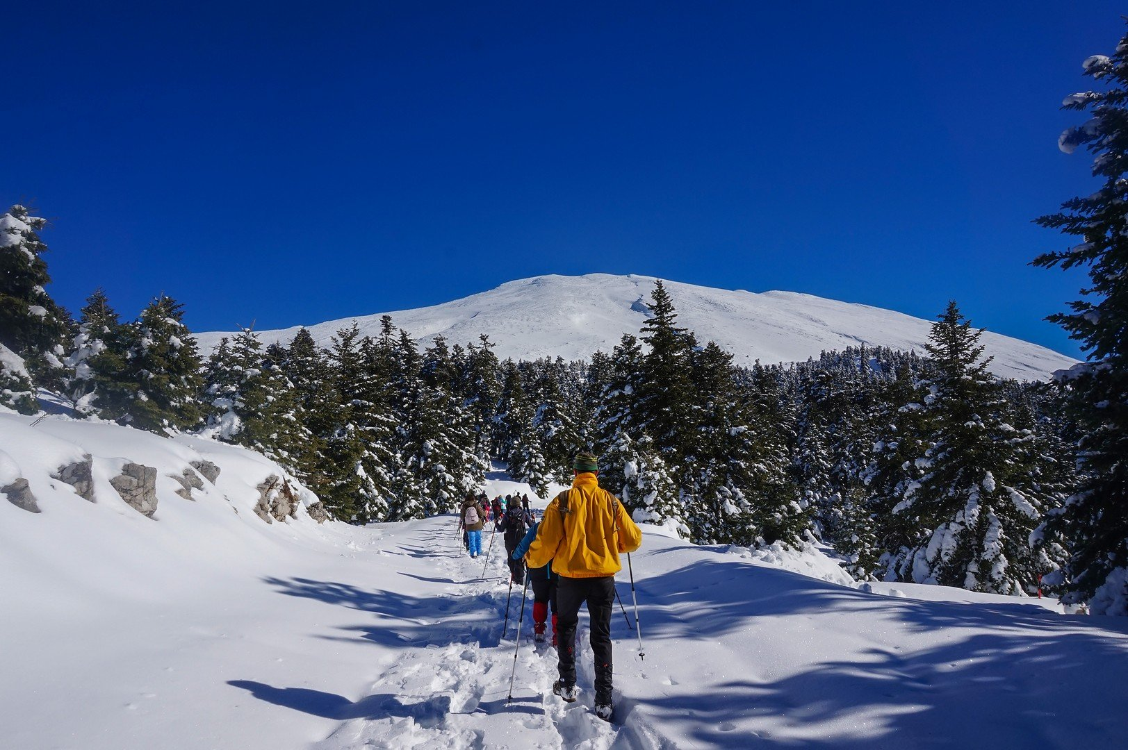 The road to Parnassus Shelter Michael Deffner Located in the southwestern slopes of Mount Parnassos at an altitude of 1825m shutterstock_585450821